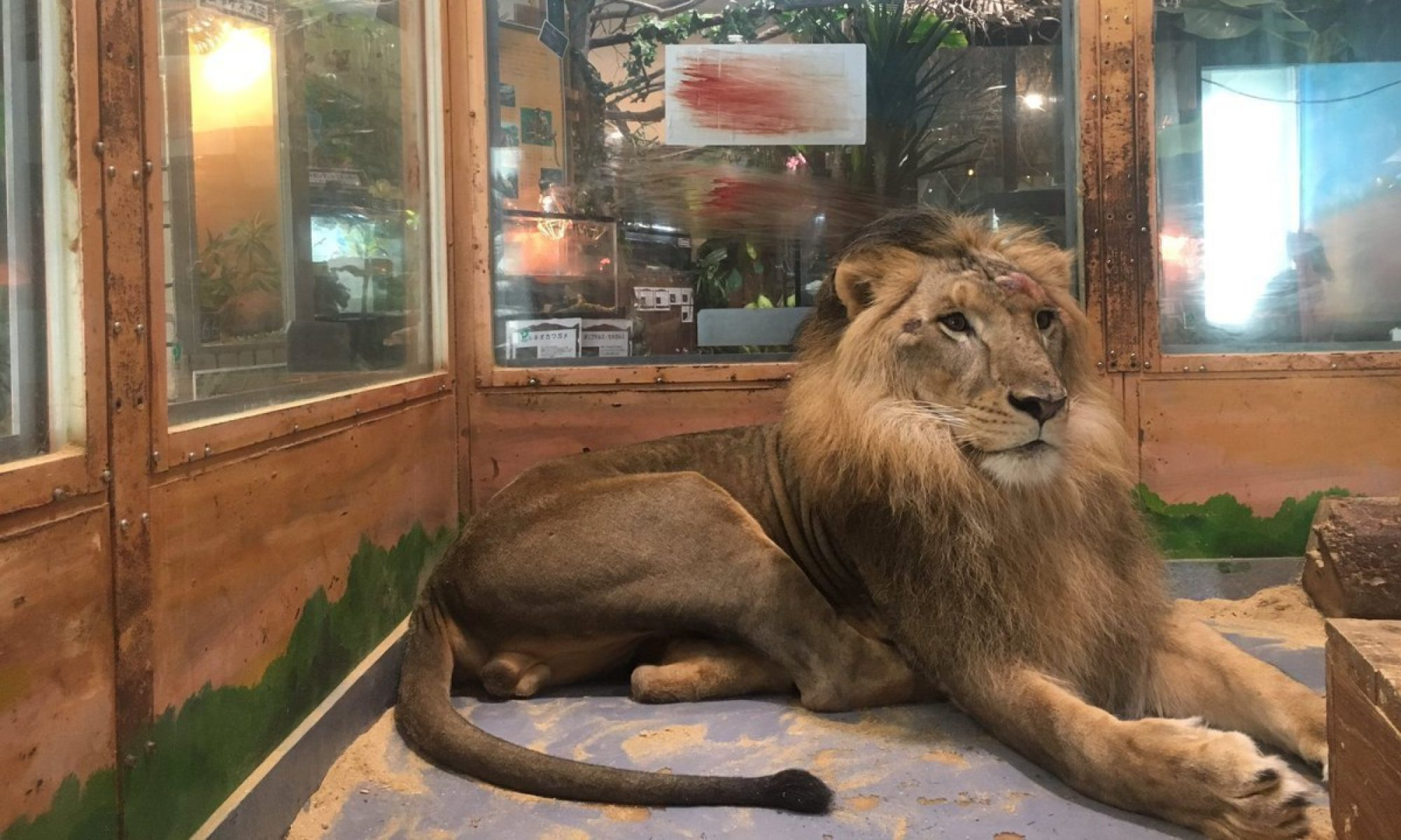 ピエリ守山「めっちゃさわれる動物園」公開質問状
